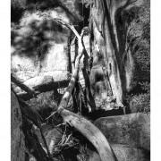 Raglan Falls 2