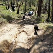 4wd track 2
