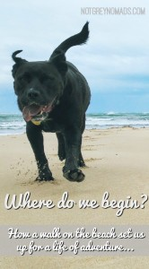 where do we begin - How a walk on the beach set us up for a life of adventure - notgreynomads.com